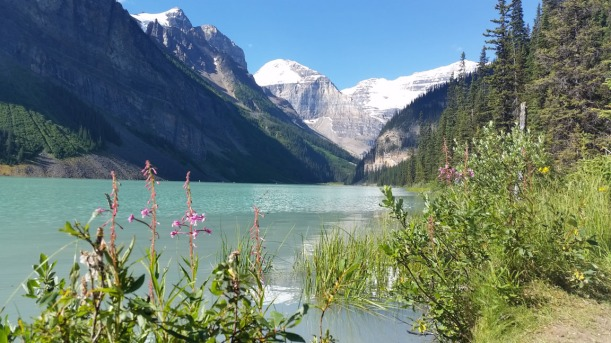 Lake Louise had water the color of the Caribbean ocean!